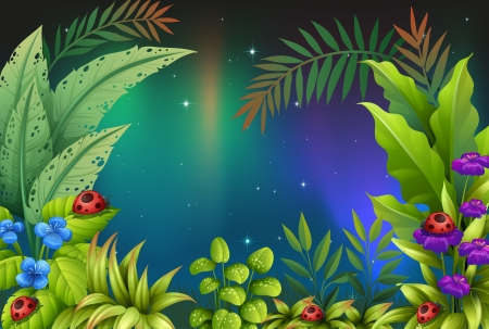 morning dew: Illustration of the five bugs in a rain forest Illustration