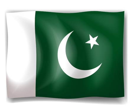 pakistan flag: Illustration of the flag of Pakistan on a white background Illustration