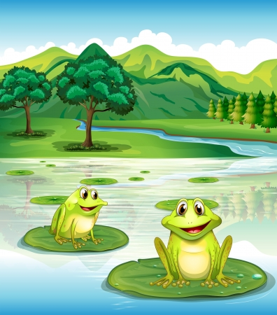 pads: Illustration of two frogs above the waterlilies