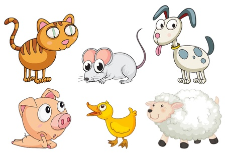 Illustration of the six different kinds of animals on a white background Vector