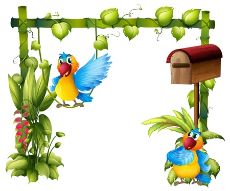 Illustration of two parrots with a wooden mailbox on a white background Vector