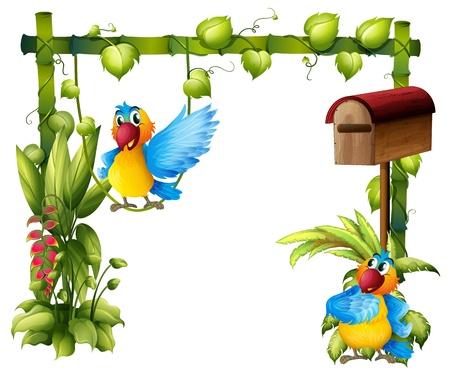 loros verdes: Ilustración de dos loros con un buzón de madera sobre un fondo blanco Vectores