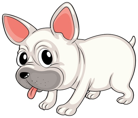 animal tongue: Illustration of a white bulldog on a white background Illustration