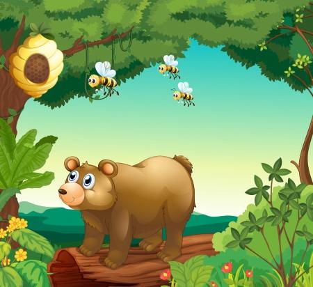 oso caricatura: Ilustración de un oso con tres abejas en el interior del bosque