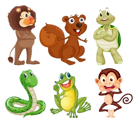 Illustration of the six different kinds of animals in the jungle on a white background Stock Vector - 18210170