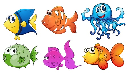 colorful fishes: Illustration of the five different kinds of sea creatures on a white background Illustration