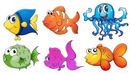 peces de acuario: Ilustraci�n de los cinco tipos diferentes de criaturas del mar sobre un fondo blanco