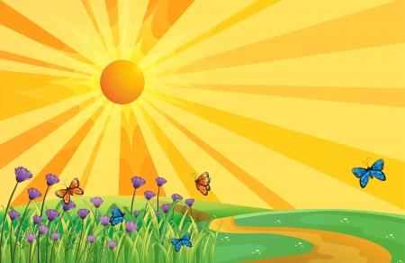 hilltop: Illustration of a sunset at the hilltop Illustration
