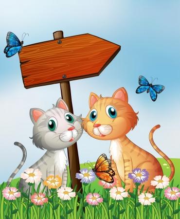 chaton en dessin anim�: Illustration de deux chats devant un conseil fl�che en bois vide Illustration