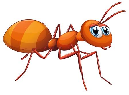 hormiga: Ilustraci�n de una hormiga grande en un fondo blanco Vectores