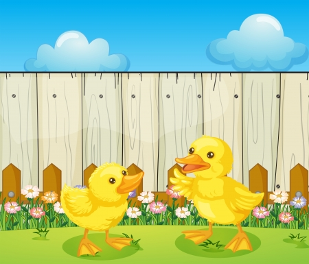 Illustration of the two baby ducks inside the fence Vector
