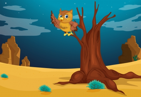 Illustration of an owl above a tree Vector