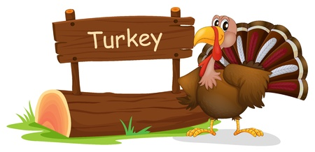 Illustration of a turkey with a wooden signboard on a white background Vector
