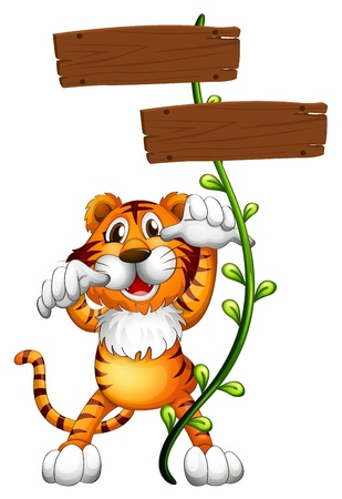 Illustration of a tiger at the back of a two-plank empty board on a white background Vector