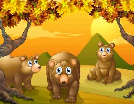 Illustration of the three brown bears Vector
