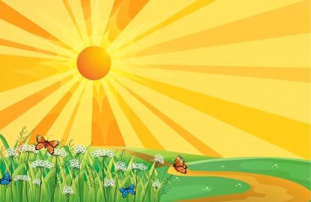 hilltop: Illustration of the hilltop and the sunset Illustration