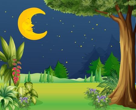 star and crescent: Ilustraci�n de un sue�o de media luna