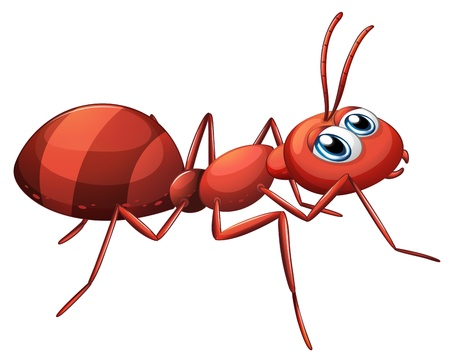 hormiga caricatura: Ilustración de una hormiga raya en un fondo blanco Vectores