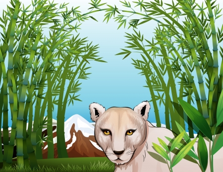 Illustration of a scary tiger at the bamboo forest Vector