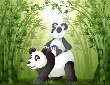 Illustration of the two pandas inside the bamboo forest Vector