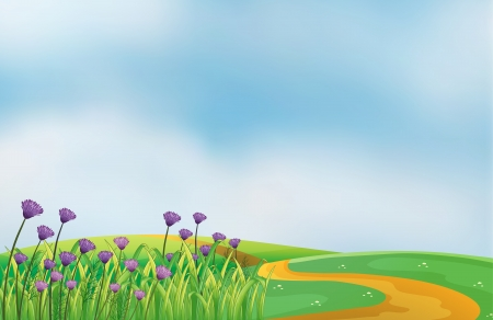 cartoon land: Illustration of a garden with violet flowers at the top of the hills