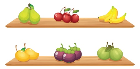 wooden shelves: Illustration of the six different kinds of fruits in the wooden shelves on a white background
