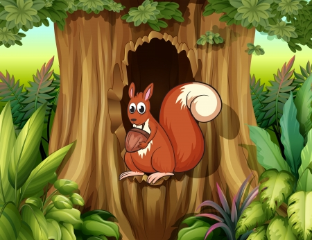 Illustration of a squirrel in a hollow holding a nut Vector