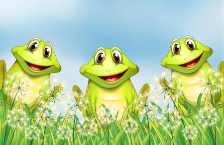 rana venenosa: Ilustración de las tres ranas en el jardín