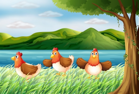 Illustration of the three chickens at the riverbank Illustration