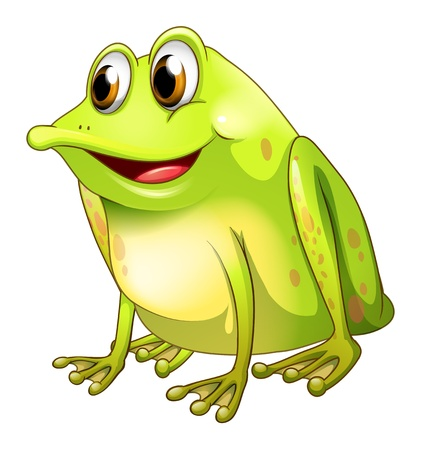 Illustration of a green bullfrog on a white background Illustration
