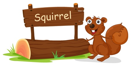 Illustration of a squirrel beside a wooden signage on a white background Vector