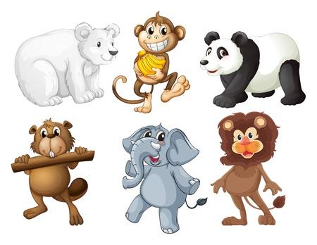 животные: Иллюстрация из животных в лесу на белом фоне