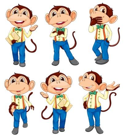 singes: Illustration des diff�rentes positions d'un singe sur un fond blanc