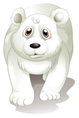 polar: Illustration of a giant white polar bear on a white background Illustration