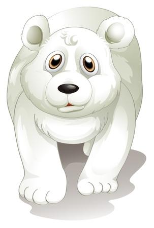 �  giant panda: Ilustraci�n de un gigantesco oso polar blanco sobre un fondo blanco