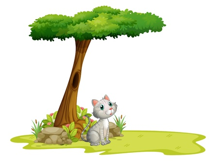 cute cartoons: Illustration of a cat under a tree on a white background Illustration