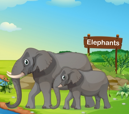 Illustration of a small and big elephant with a signboard Stock Vector - 18390361