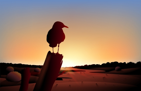 Illustration of the sunset view of the desert with a big bird Vector