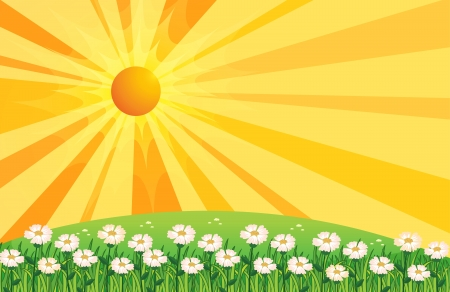 sunshine background: Illustration of a garden of white flowers above the hills