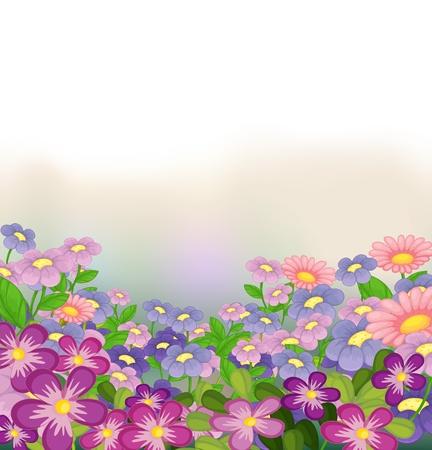 cartoons designs: Illustrazione di un giardino di fiori colorati su uno sfondo bianco Vettoriali