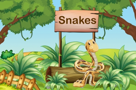 Illustration of the snakes in the hills beside a wooden signboard Vector