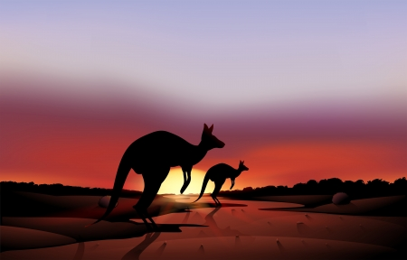 Illustration of a big and a small kangaroo in the desert Stock Vector - 18458640