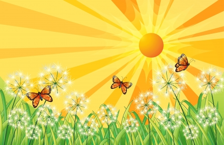Illustration of a sunset scenery with butterflies Vector