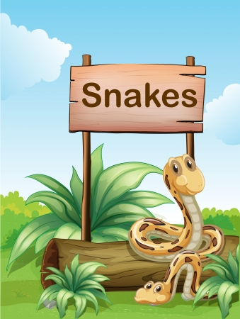 Illustration of the two snakes beside a wooden signboard Stock Vector - 18459407