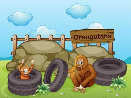 Illustration of the two Orangutans near the big rocks Stock Vector - 18459271