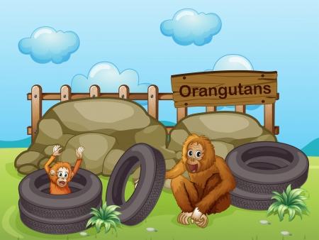 mother board: Illustration of the two Orangutans near the big rocks