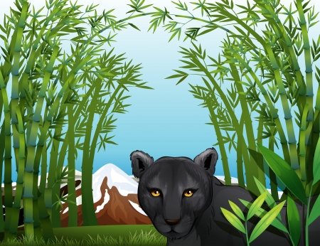 black panther: Illustration of a black panther at the bamboo forest