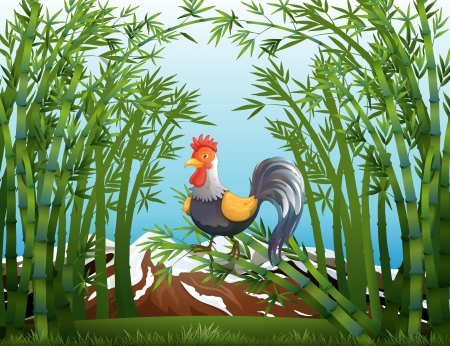 Illustration of a rooster in the bamboo forest Vector