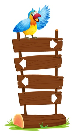 macaw parrot: Illustration of a parrot at the top of the signboards with arrows on a white background Illustration