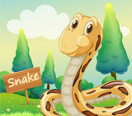 Illustration of a snake beside a wooden signage Vector